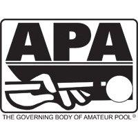 APA Pool Cues
