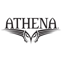 Athena Pool Cues