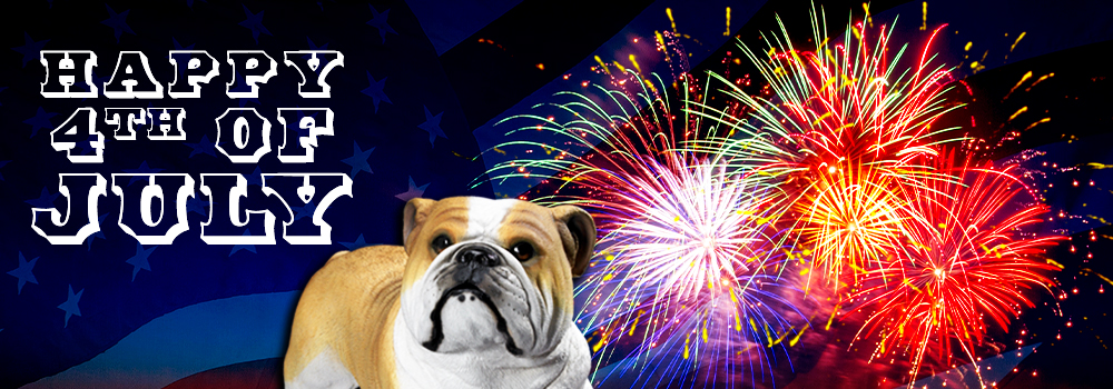 Happy 4th of July Celebration